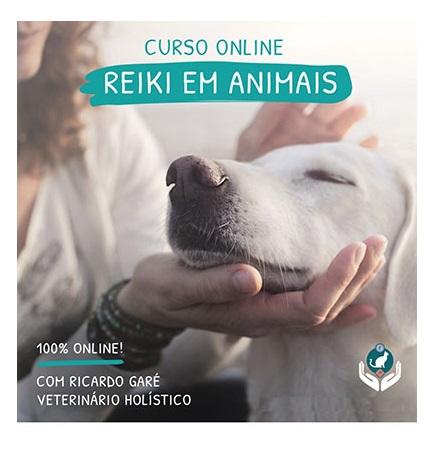 Curso de Reiki em animais online