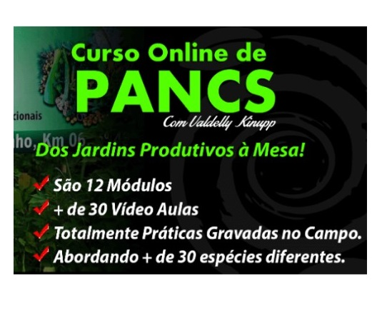 PANCS Plantas Alimenticias nao convencionais curso online Valdelly Kinupp