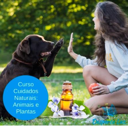 cuidados-naturais-animais-plantas